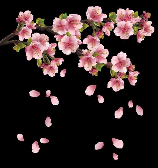 tubes_fleurs_tiram_166