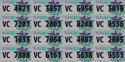 VICE_licenseplates_LQ.png