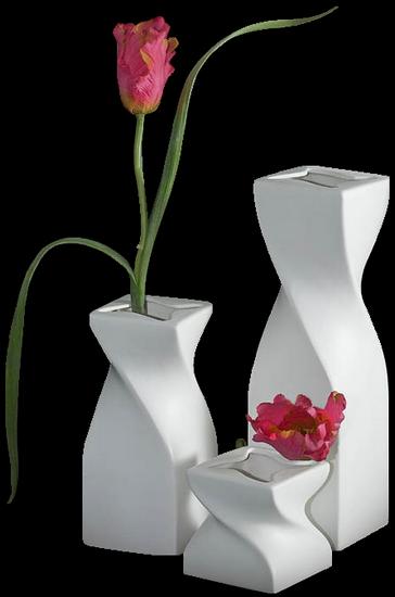 tubes_fleurs_tiram_371