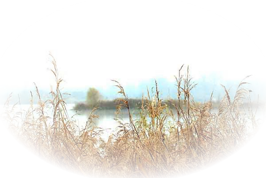 paysage_tiram_815