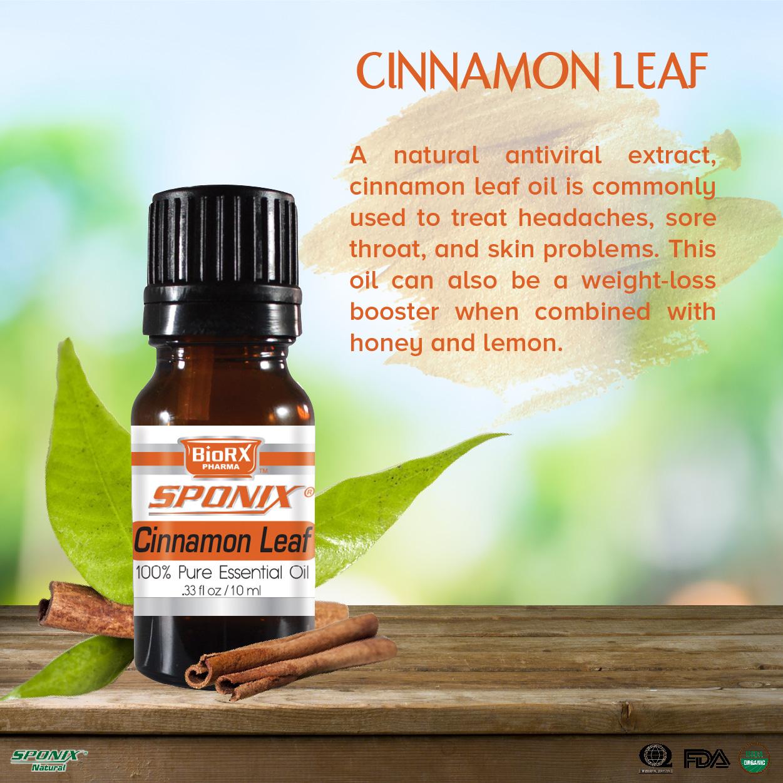sponix_items_cinnamonleaf