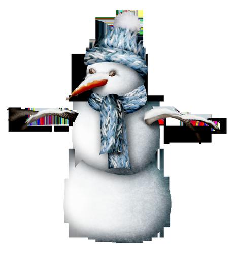 bonhommes-de-neiges-tiram-357
