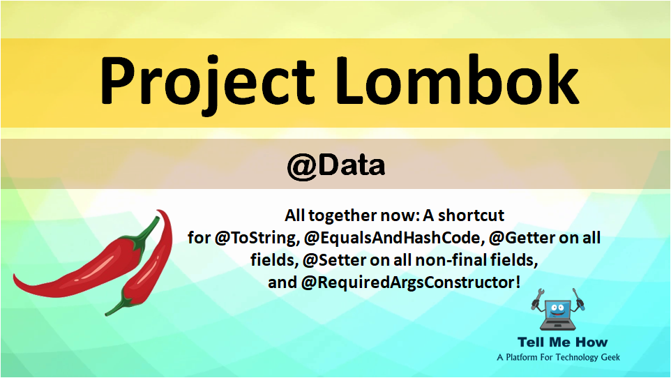 Features of Project Lombok - Data