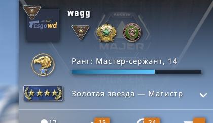 CS:GO - 4 Звезды Инвентарь 55 000 Руб