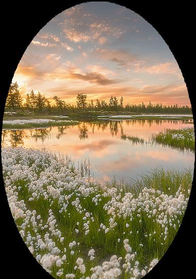 paysage_tiram_878