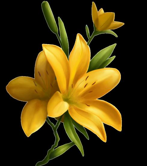 tubes_fleurs_tiram_461