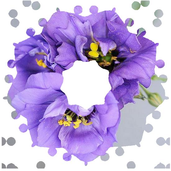 tubes_fleurs_tiram_332