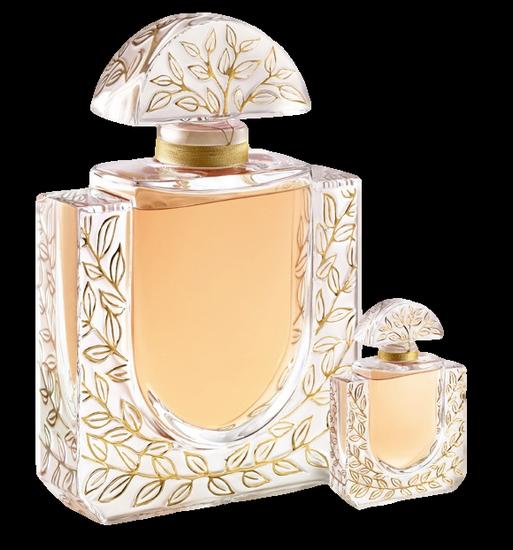 parfum_tiram_144