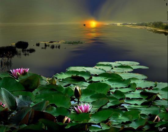 paysage_tiram_811