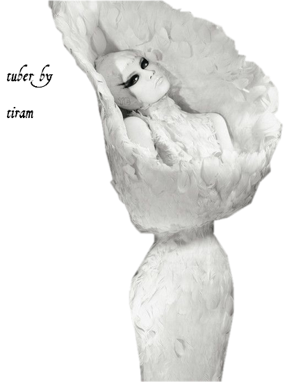 lady_baroque_tiram_161
