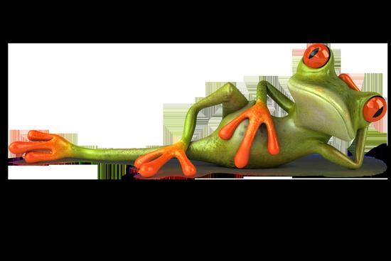 grenouille_tiram_33