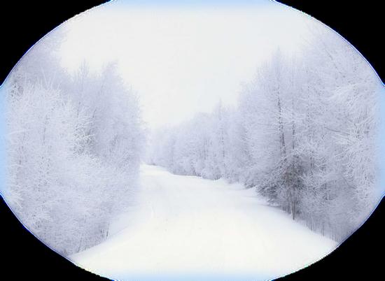 tubes-paysage-noel-970