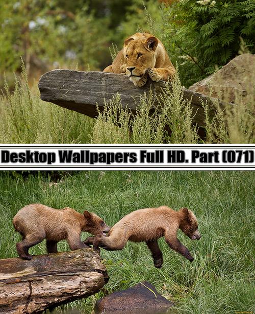 Desktop Wallpapers  HD. Part 71
