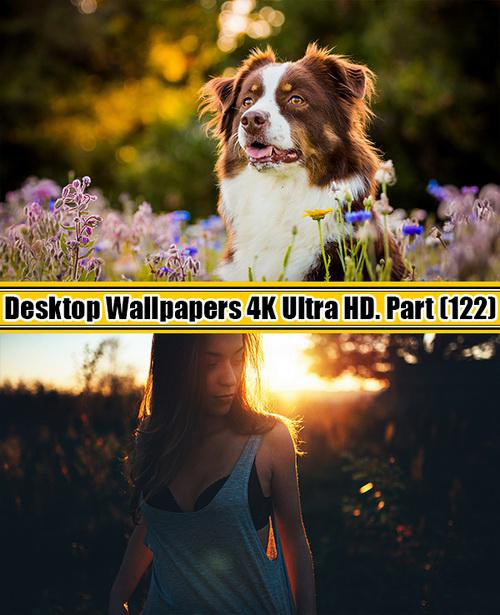 Deskop Wallpapers 4K Ultra HD. Part 122