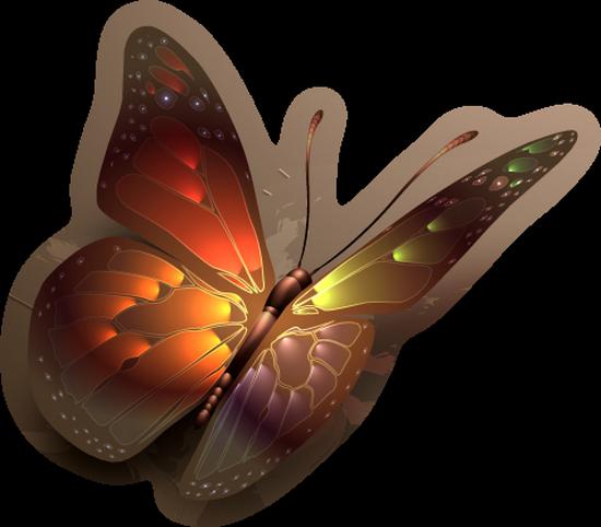 tubes_papillon_tiram_326