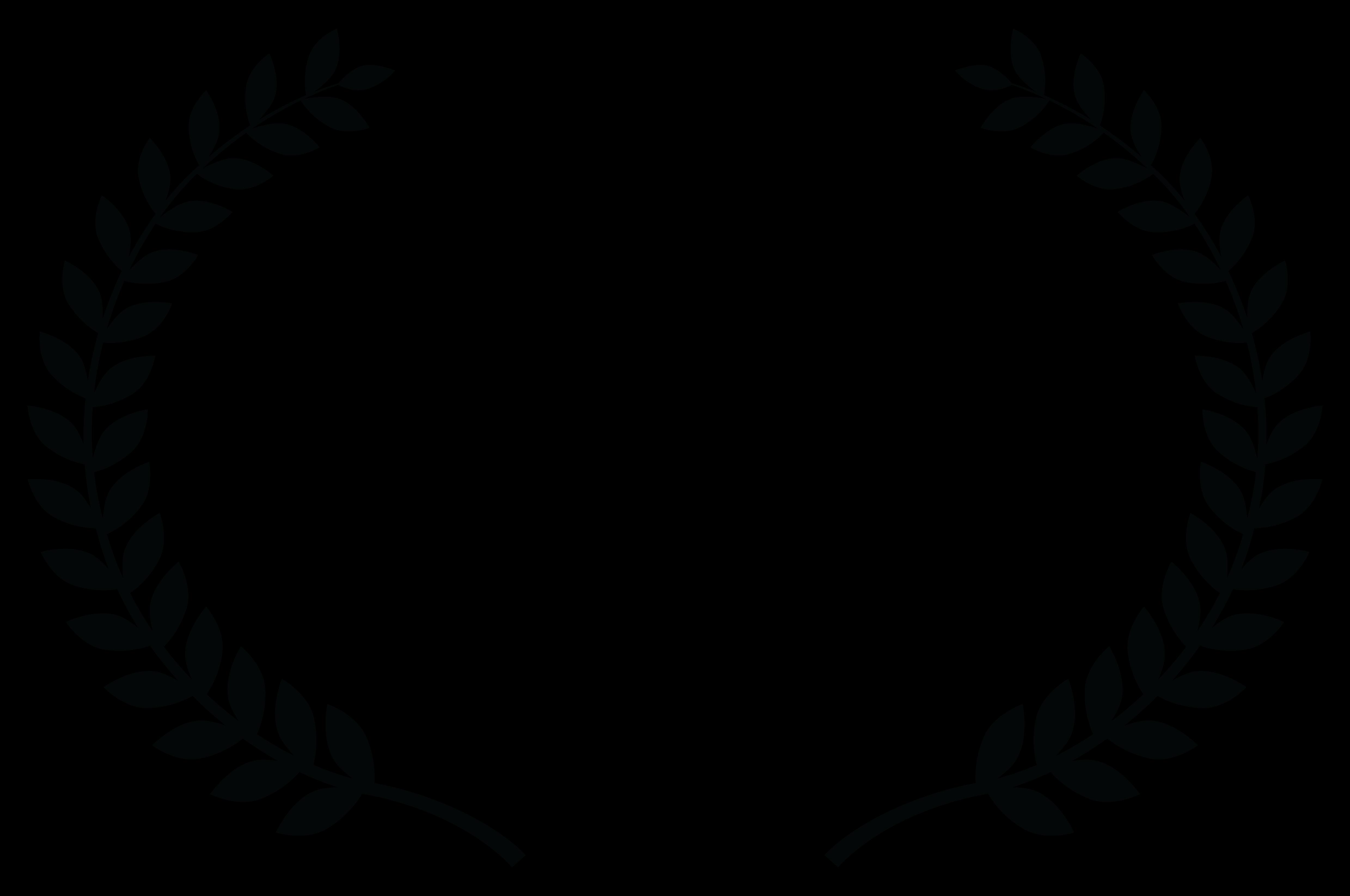 OFFICIALSELECTION_Flamingo_Film_Festival_2017_black