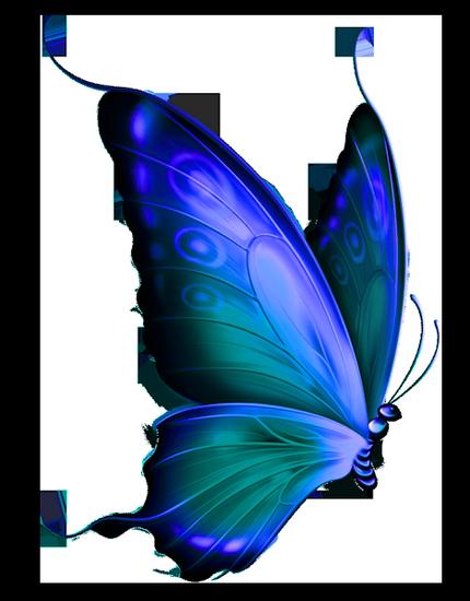 tubes_papillon_tiram_95