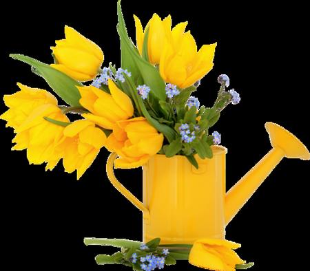 tubes_fleurs_tiram_895