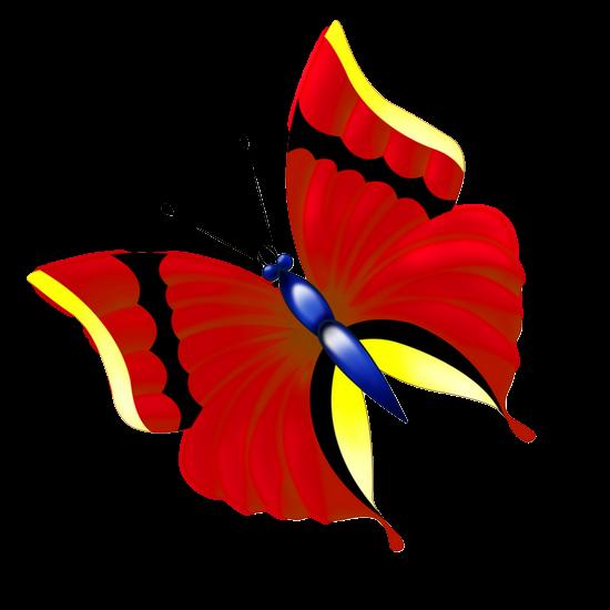 tubes_papillon_tiram_471