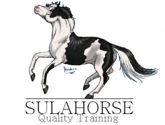 For_Sulahorse_1a