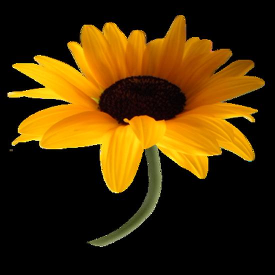 tubes_fleurs_tiram_304