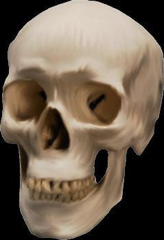 monstre-halloween-tiram-16