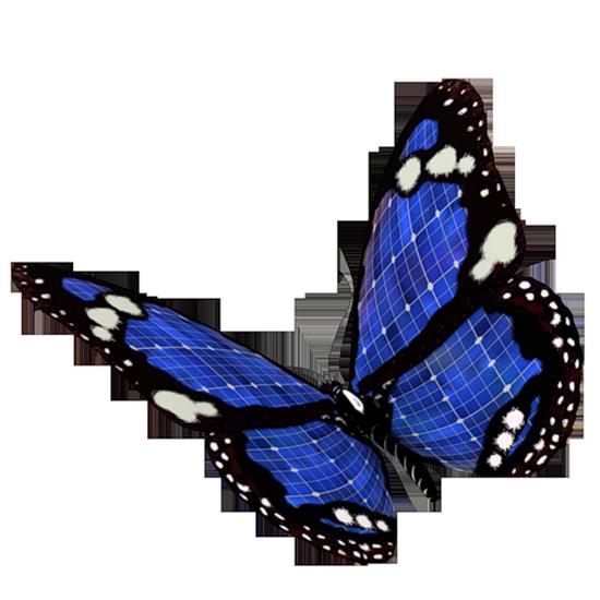 tubes_papillon_tiram_98