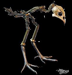 monstre-halloween-tiram-153