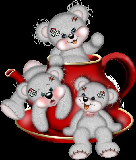 teddy_saint_valentin_tiram_391