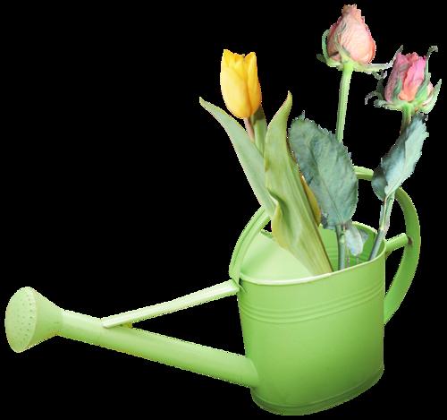 fleurs_paques_tiram_40