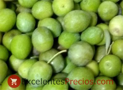 Campaña 2018, cosecha de aceitunas de verdeo