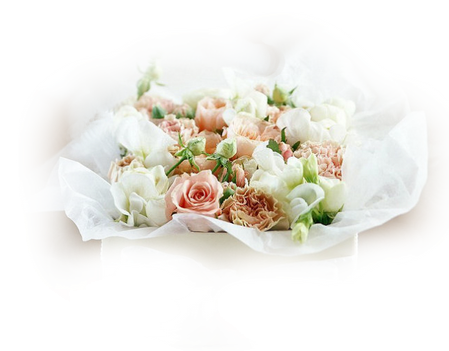 tubes_fleurs_tiram_865