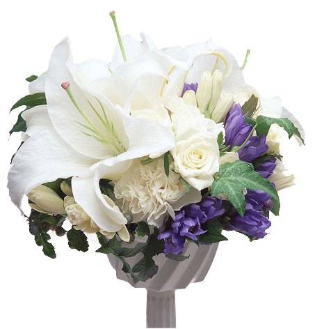 tubes_fleurs_tiram_806
