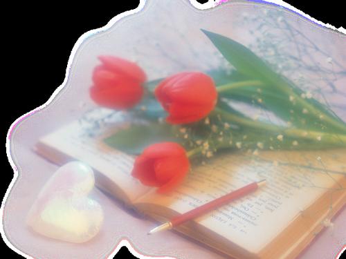 tubes_fleurs_saint_valentin_tiram_108