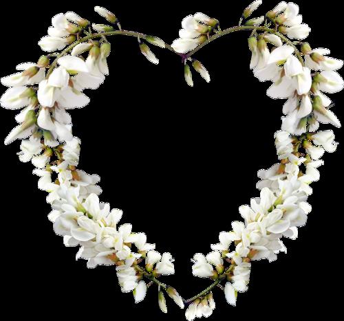 fleurs_paques_tiram_166