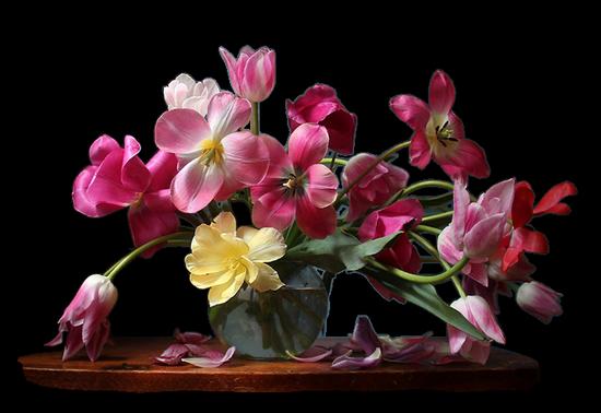 tubes_fleurs_tiram_144