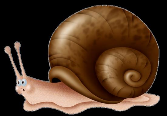 tubes_escargots_tiram_18