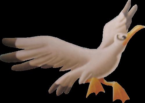 tubes_oiseaux_tiram_12