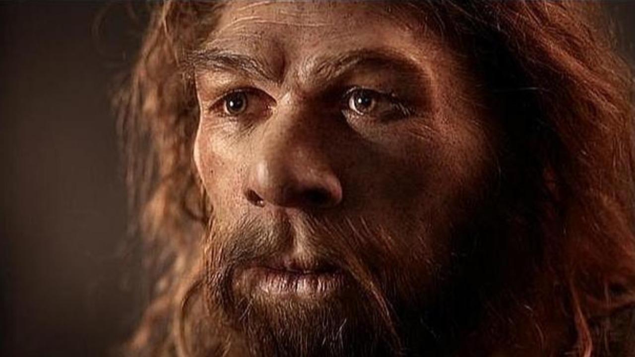 El virus que lleva 500.000 años matando al hombre a través del sexo