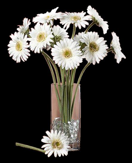 tubes_fleurs_tiram_138