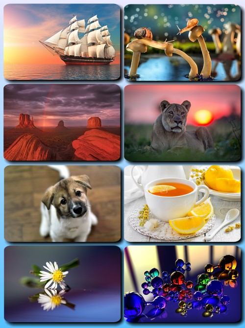 Beautiful Mixed Wallpapers Pack 741
