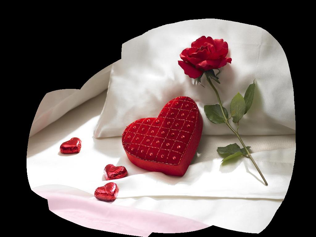 tubes_fleurs_saint_valentin_tiram_231