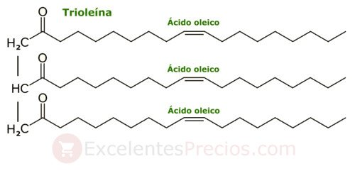 Triolein, olive oil calories, healthy triglycerides, oleic acid, calories oil of olive