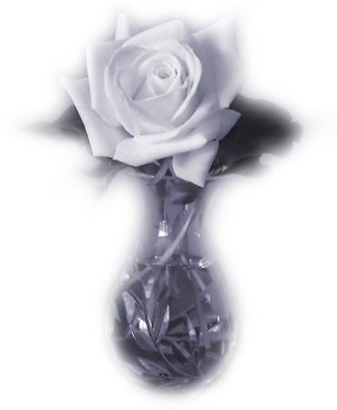 tubes_fleurs_tiram_824