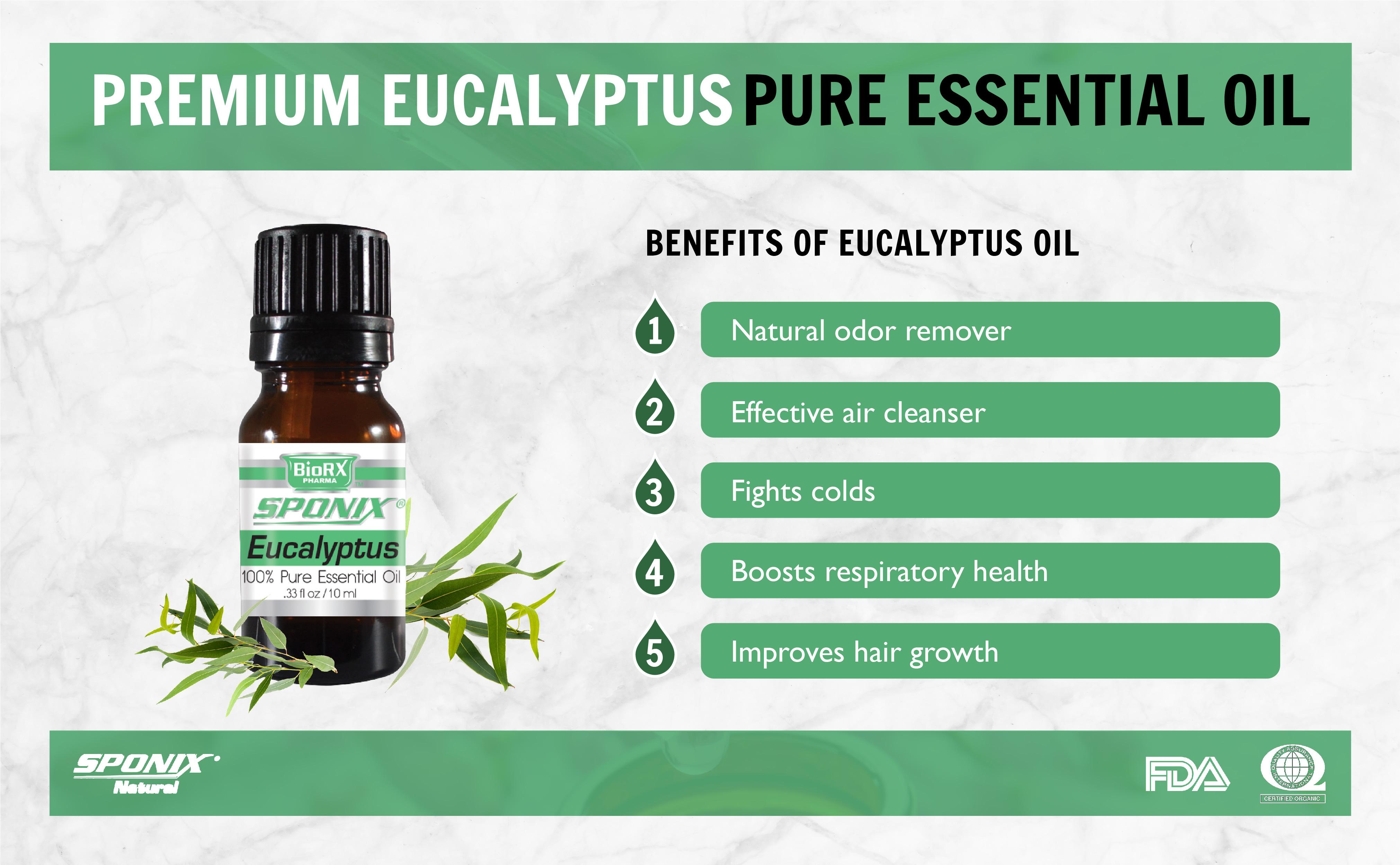 sponix_eo_eucalyptus