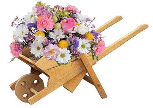 fleurs_paques_tiram_293