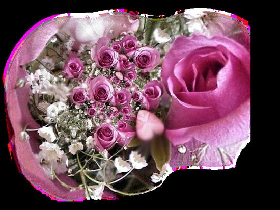 tubes_fleurs_tiram_445