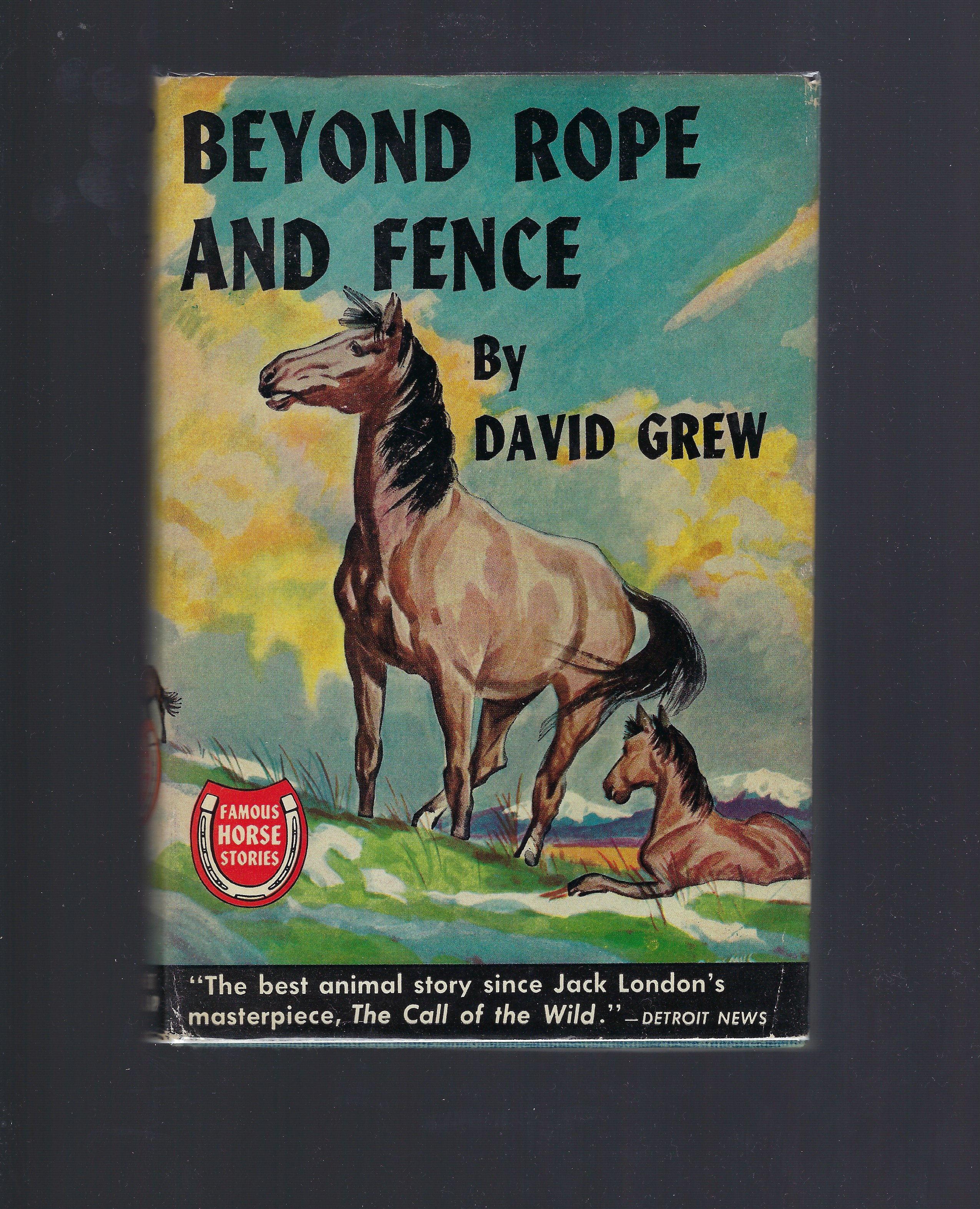 Beyond Rope and Fence (Famous Horse Stories) HB/DJ David Grew, David Grew