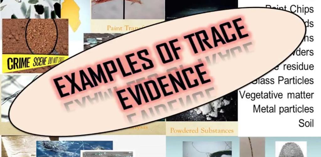 Law Evidence Summary Book