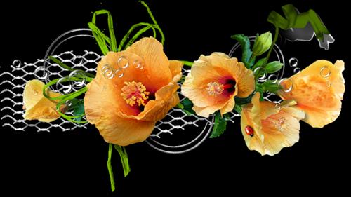 tubes_fleurs_tiram_544